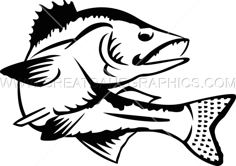 Trout clipart freshwater animal. Walleye drawing at getdrawings