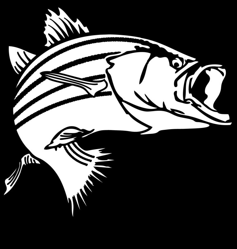 Clipart ruler fish. Walleye drawing at getdrawings