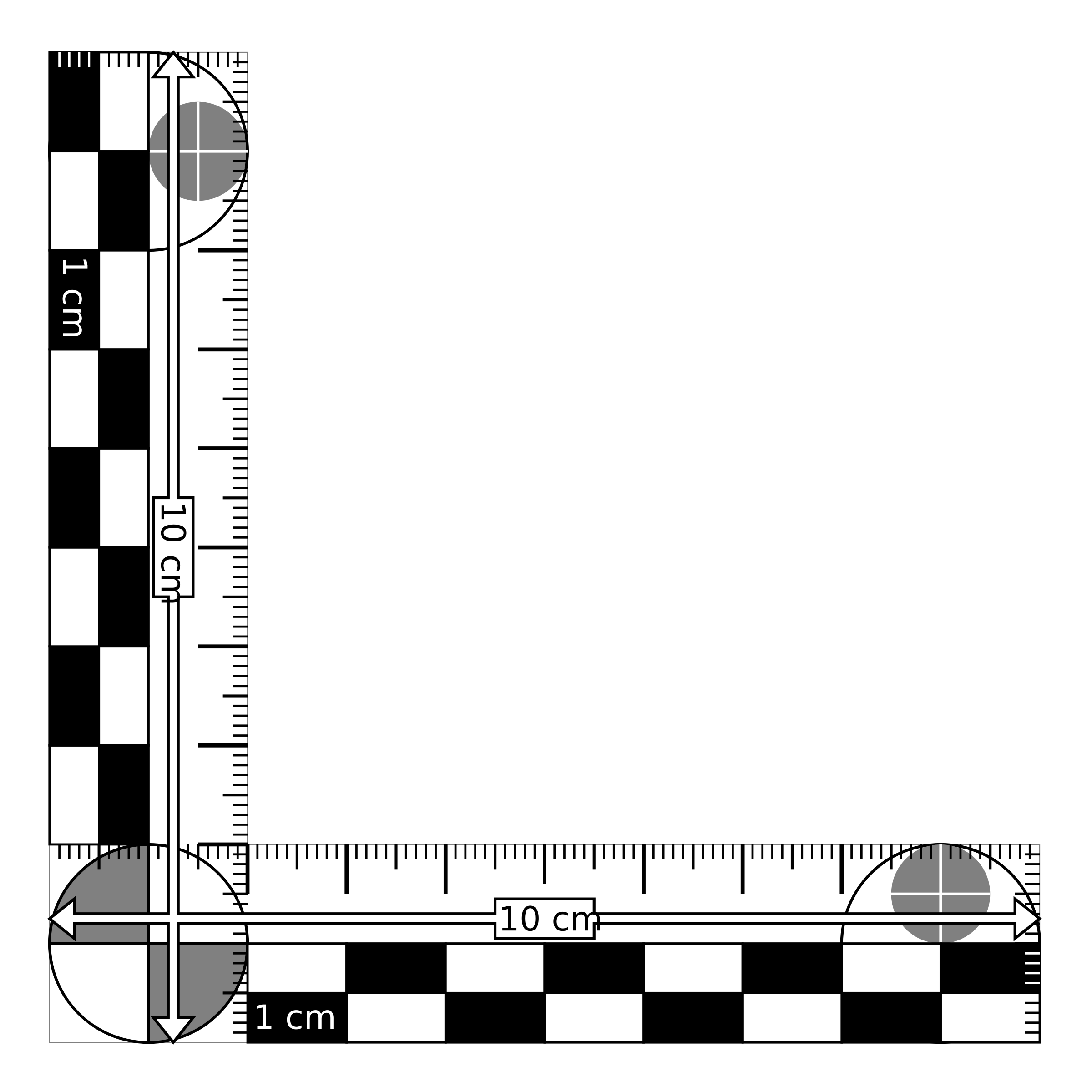 Photomacrographic scale x cm. Clipart ruler printable