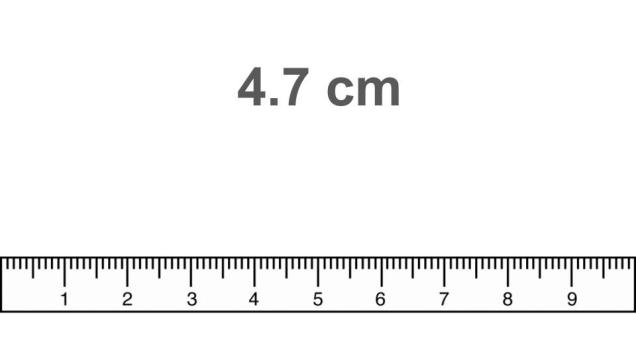 Metric guided practice for. Clipart ruler science