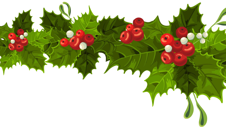 Mistletoe Clipart Merry Christmas Mistletoe Merry Christmas Transparent Free For Download On Webstockreview 2020