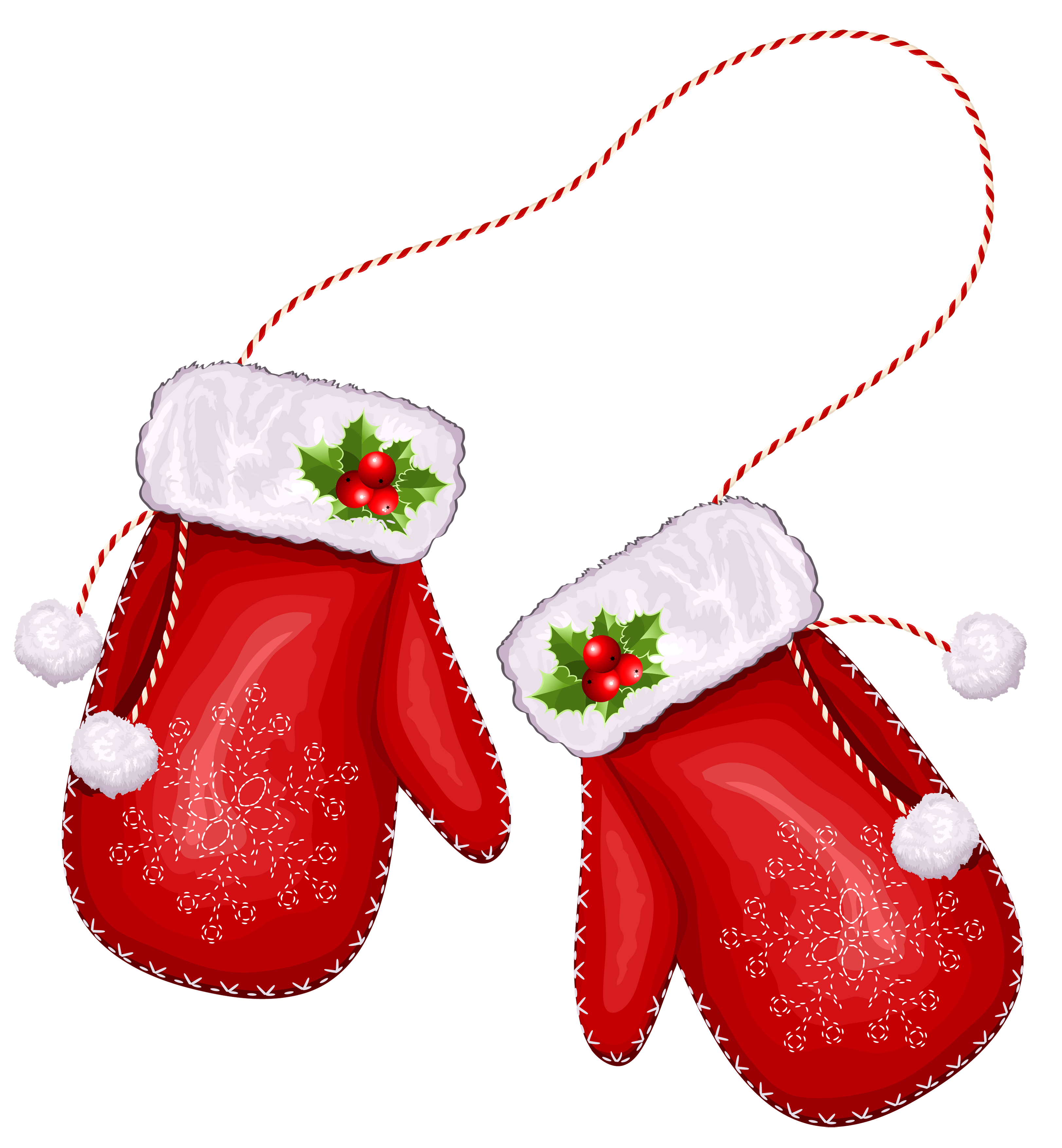 collection of gloves. Santa clipart boxing