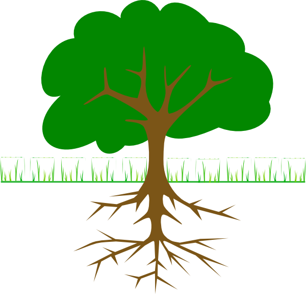 Branches and roots clip. Tree clipart cartoon