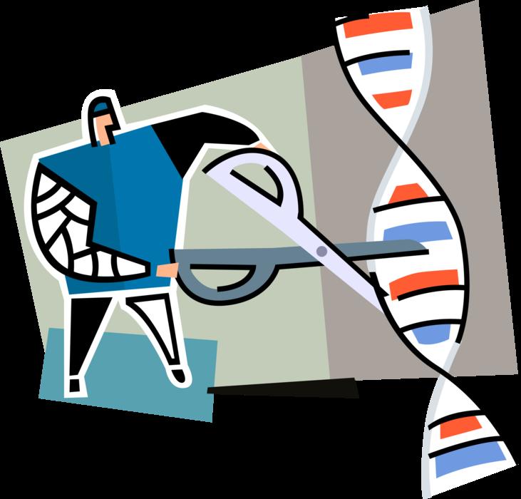Engineering clipart genetic engineering. Geneticist engineers dna vector
