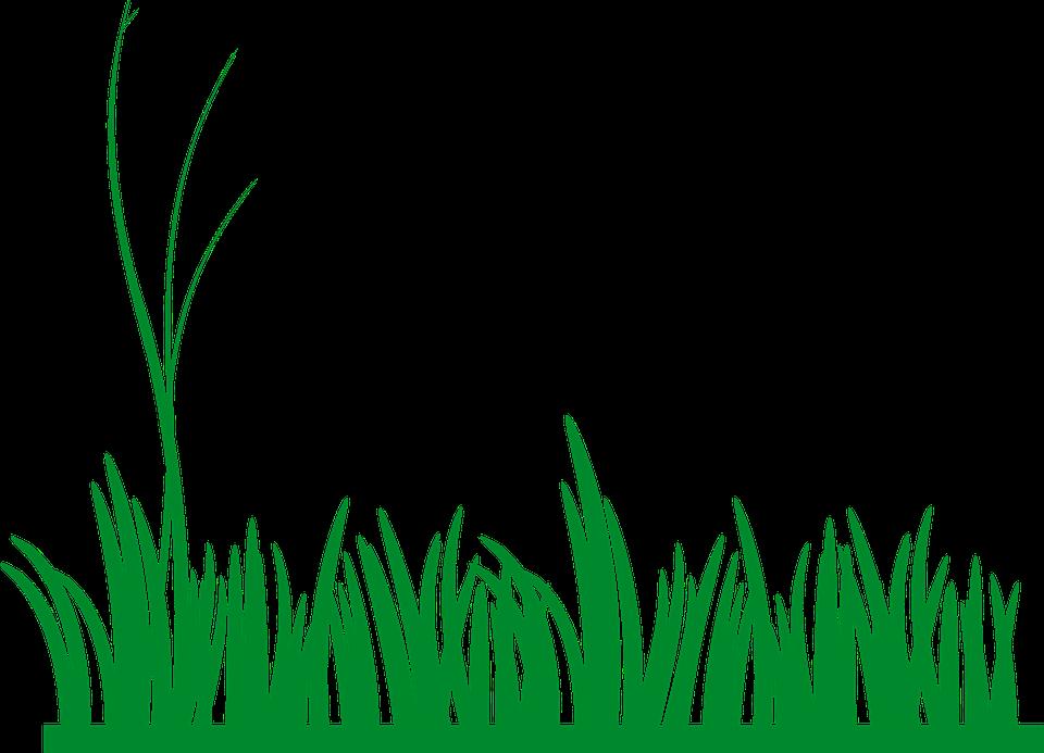 Antarctica faz shapes pencil. Clipart grass shape