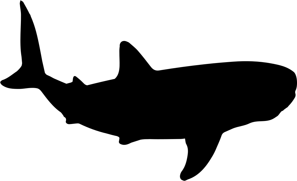 Clipart whale svg. Shark shape png icon