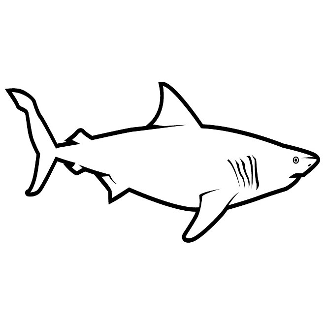 Free pictures download clip. Clipart shark black and white