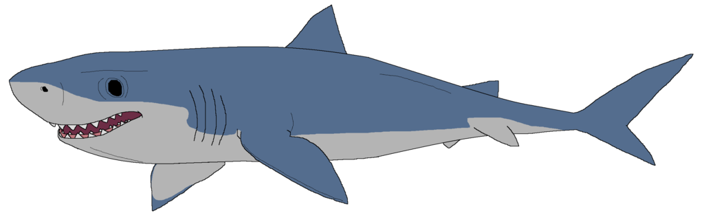 collection of drawing. Clipart shark blue shark