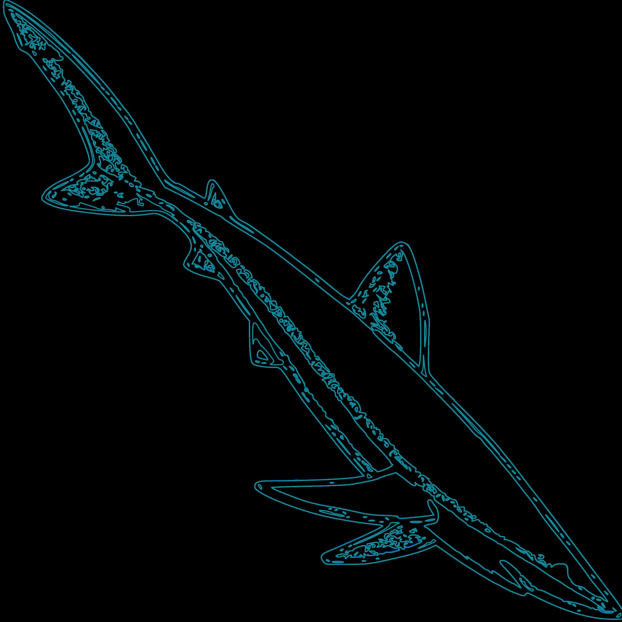 Big image png. Clipart shark blue shark