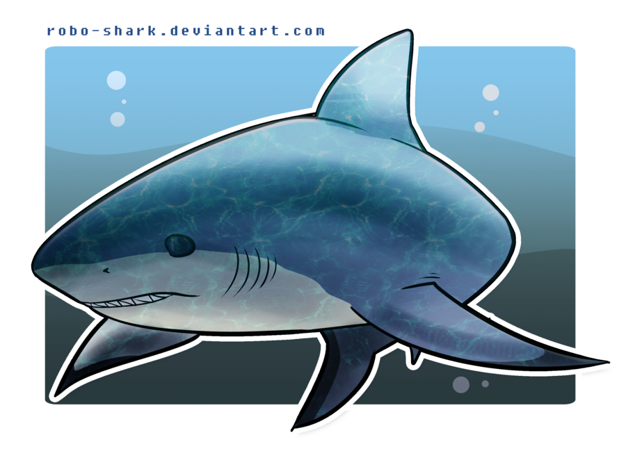 collection of drawing. Clipart shark bull shark