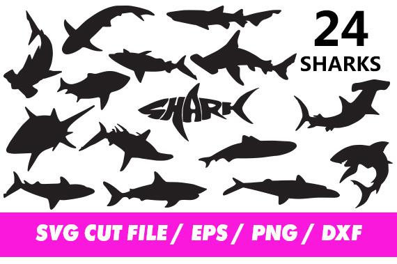 Svg files hammer animal. Clipart shark file