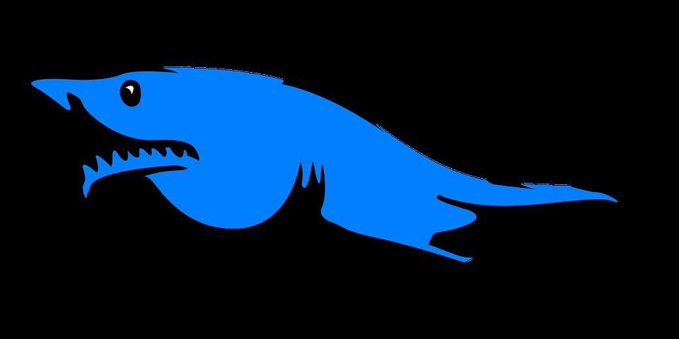 Google search sharkwheel inspiration. Clipart shark frilled shark