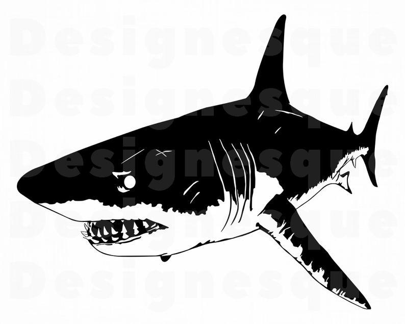 Svg files for cricut. Clipart shark great white shark