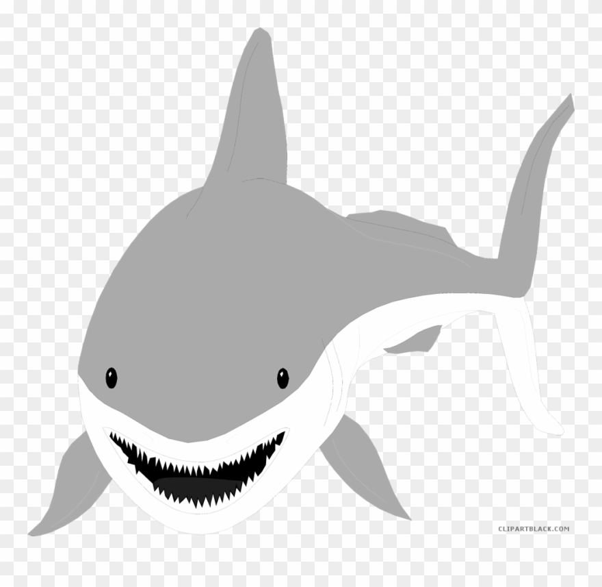 Clipart shark great white shark. With