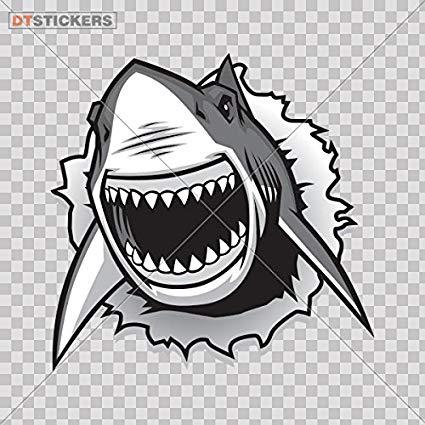 Amazon com vinyl stickers. Clipart shark jaw