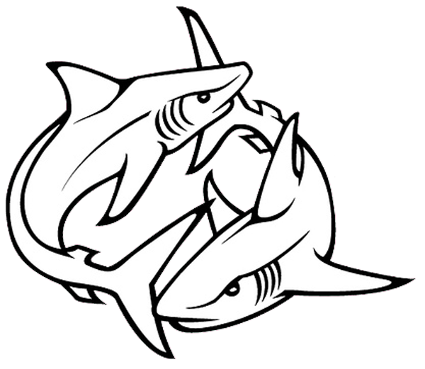 Fin drawing at getdrawings. Clipart shark outline