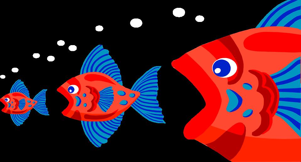 Fish free stock photo. Goldfish clipart three