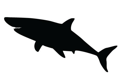 Clipart shark silhouette. Free download clip art