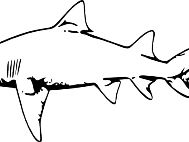Clipart shark traceable. Hammerhead transparent background clip