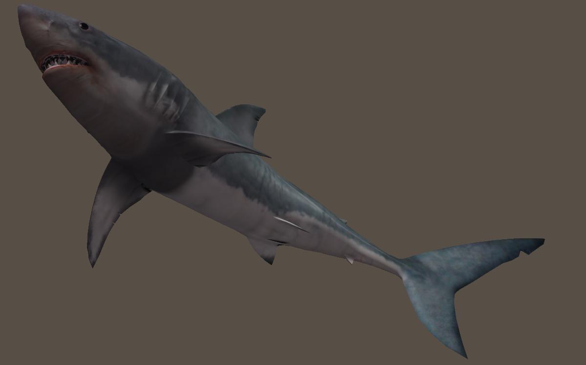 Bull great white clip. Clipart shark underwater