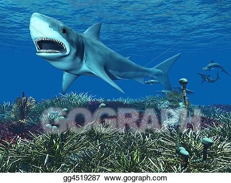 Drawing great white gg. Clipart shark underwater