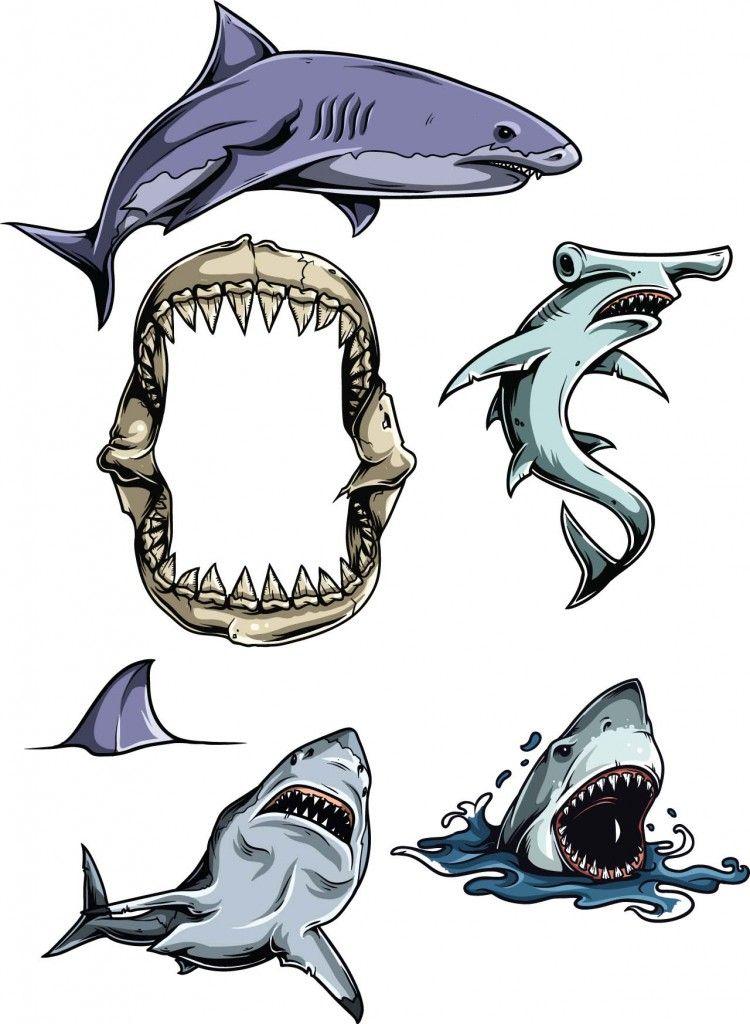 Clipart shark vector. Sharks set free vectors