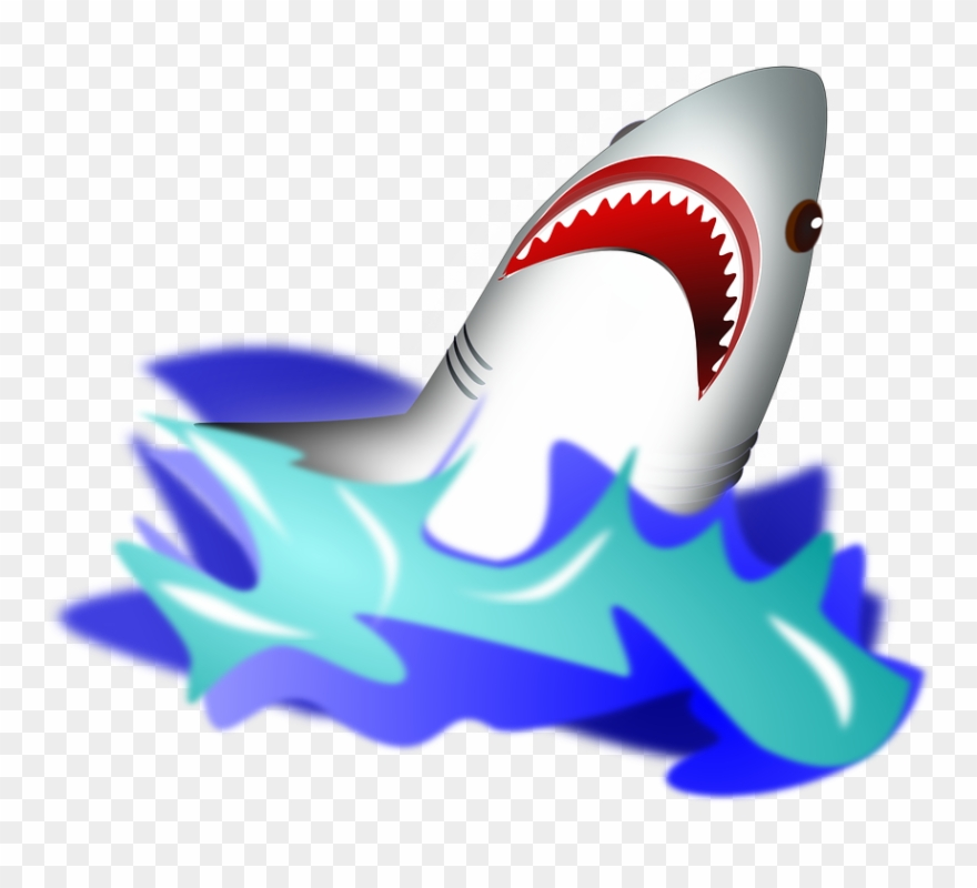 Clipart shark water. In png download pinclipart
