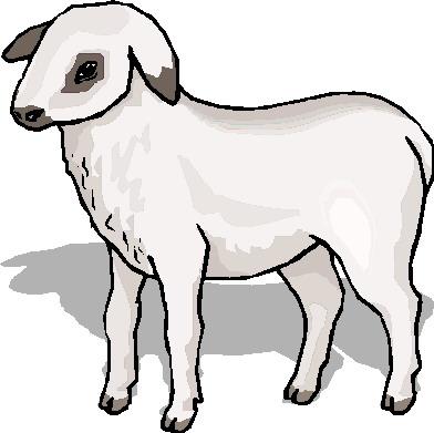 Clip art farm picgifs. Clipart sheep