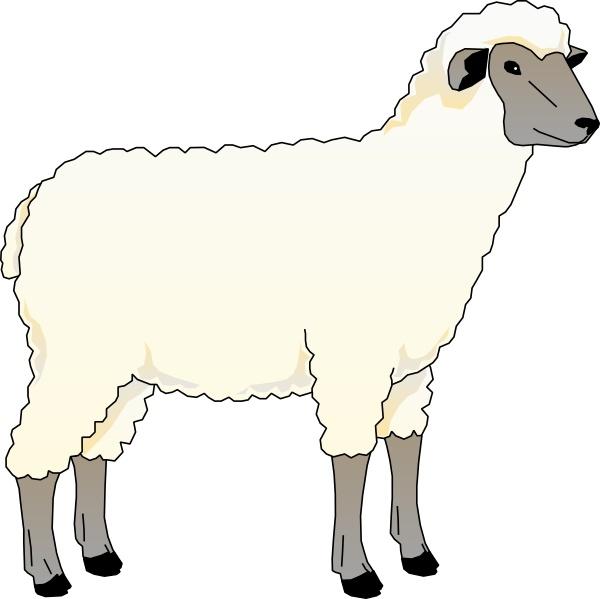 Sheep clipart. Ewe clip art free