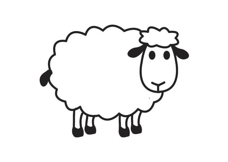 Black and white best. Sheep clipart