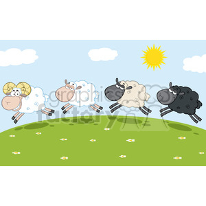 Royalty free rf illustration. Sheep clipart field