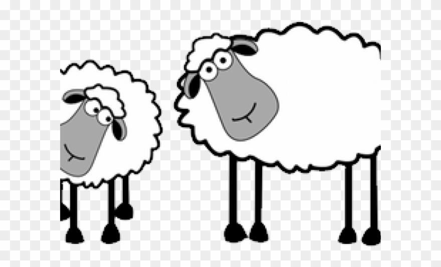Clipart sheep herd sheep. Drawn cartoon pinclipart
