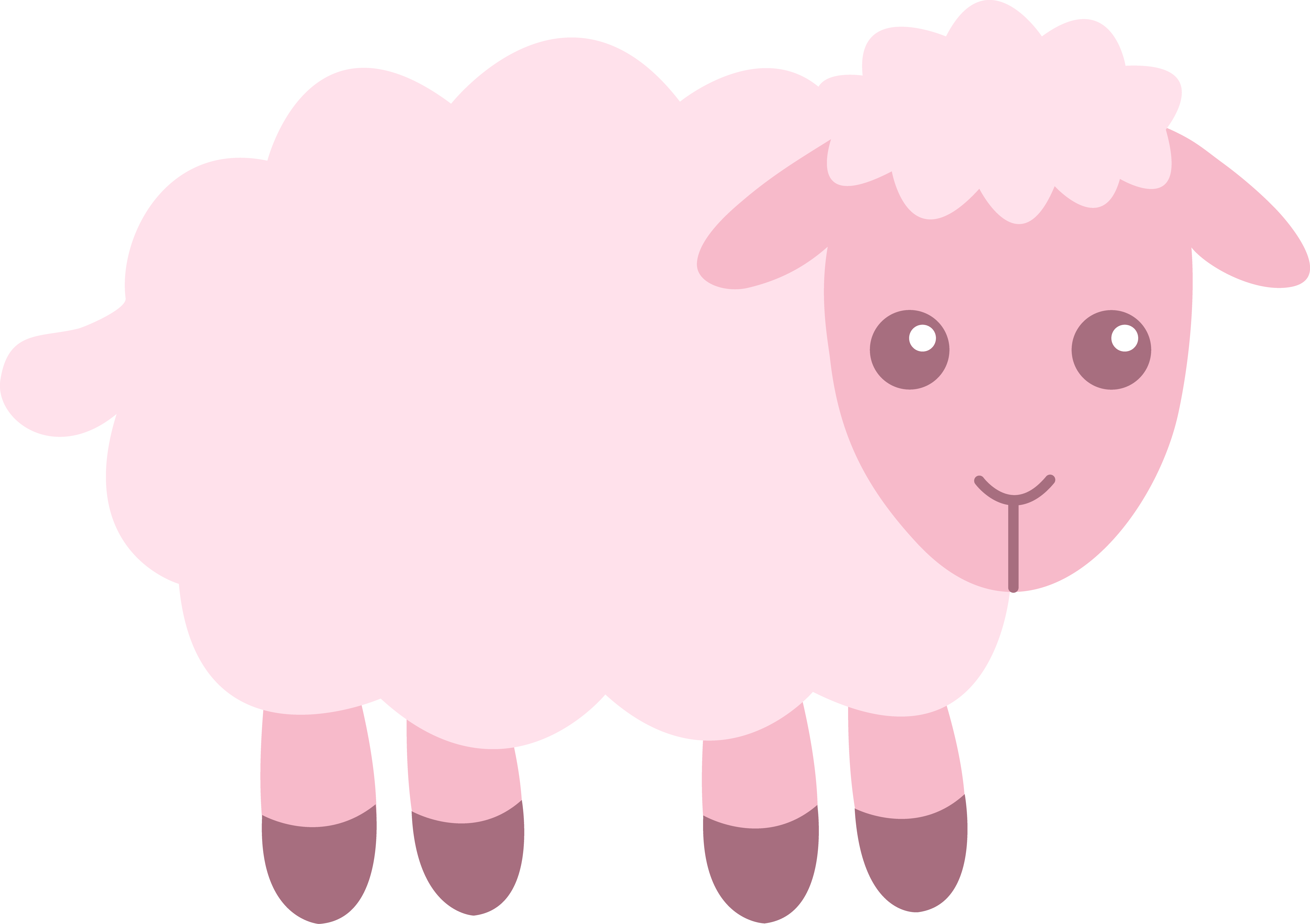Baby sheep . Lamb clipart scared