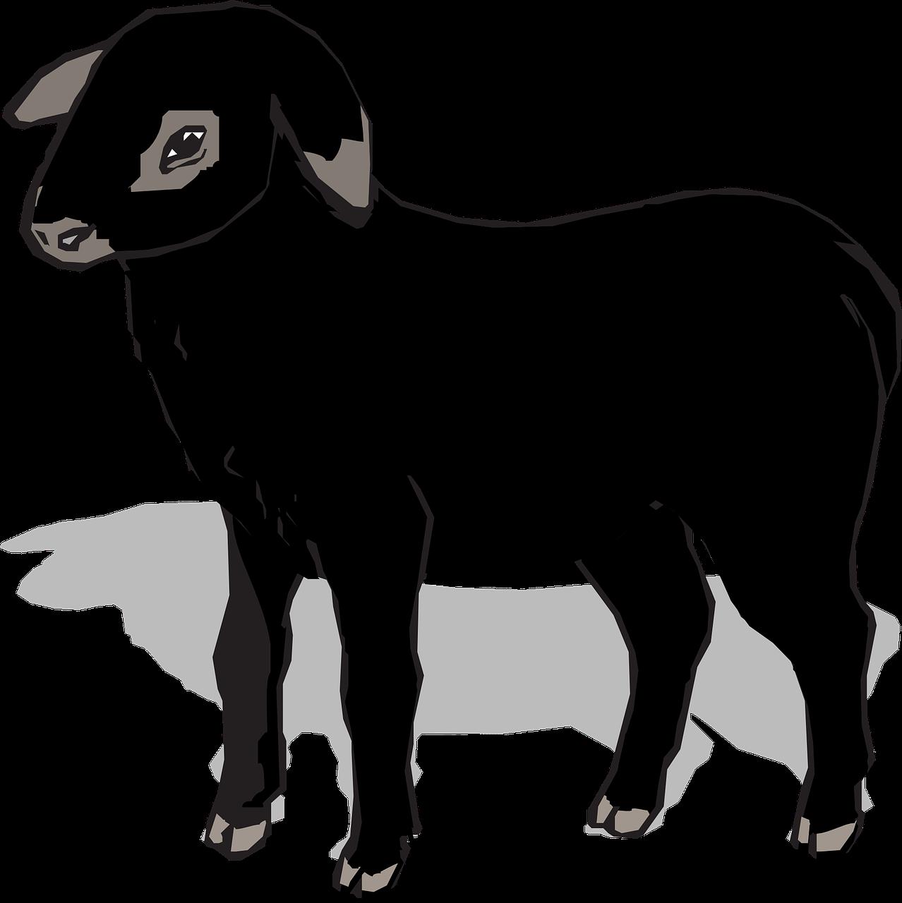 Clipart sheep shadow. Black lamb cute png