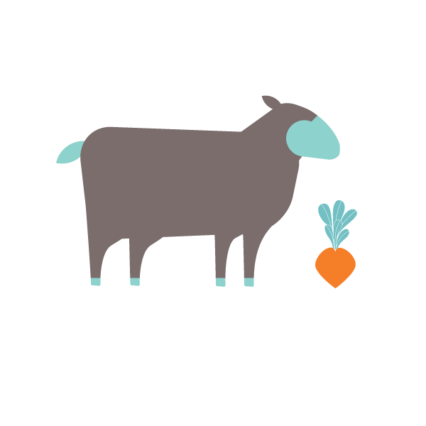 Sheep farm one forty. Ham clipart lamb leg