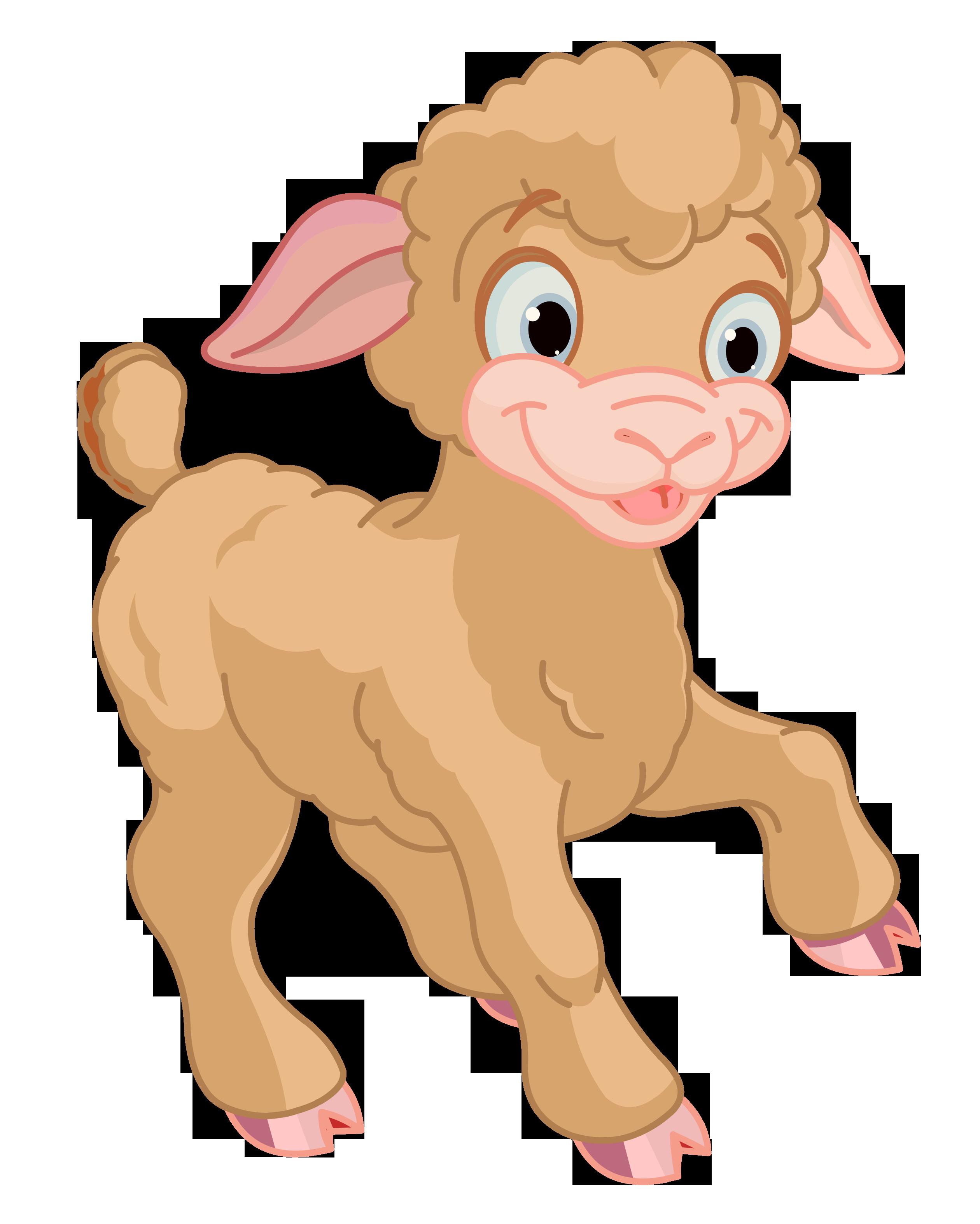 Lamb Chop Clipart