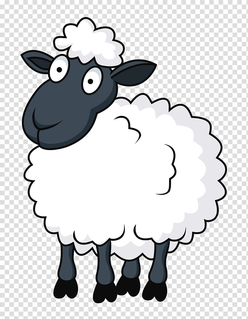 White and black sheep. Lamb clipart cartoon