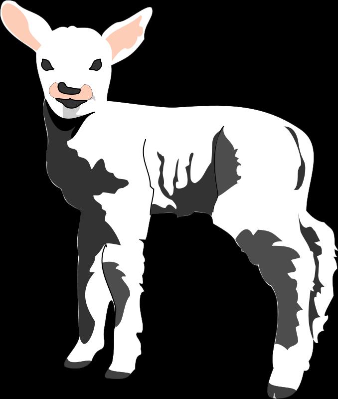 Free clip art bay. Lamb clipart god
