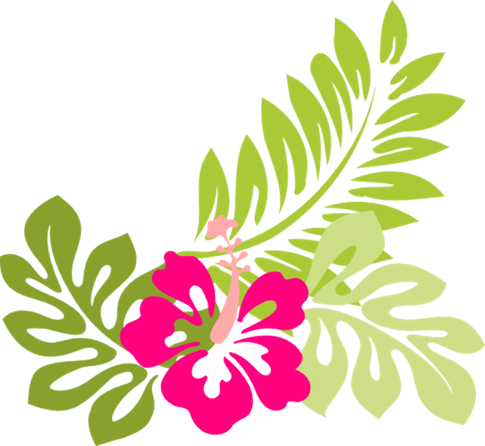 Flowers clip art free. Hawaiian clipart hawaiian attire
