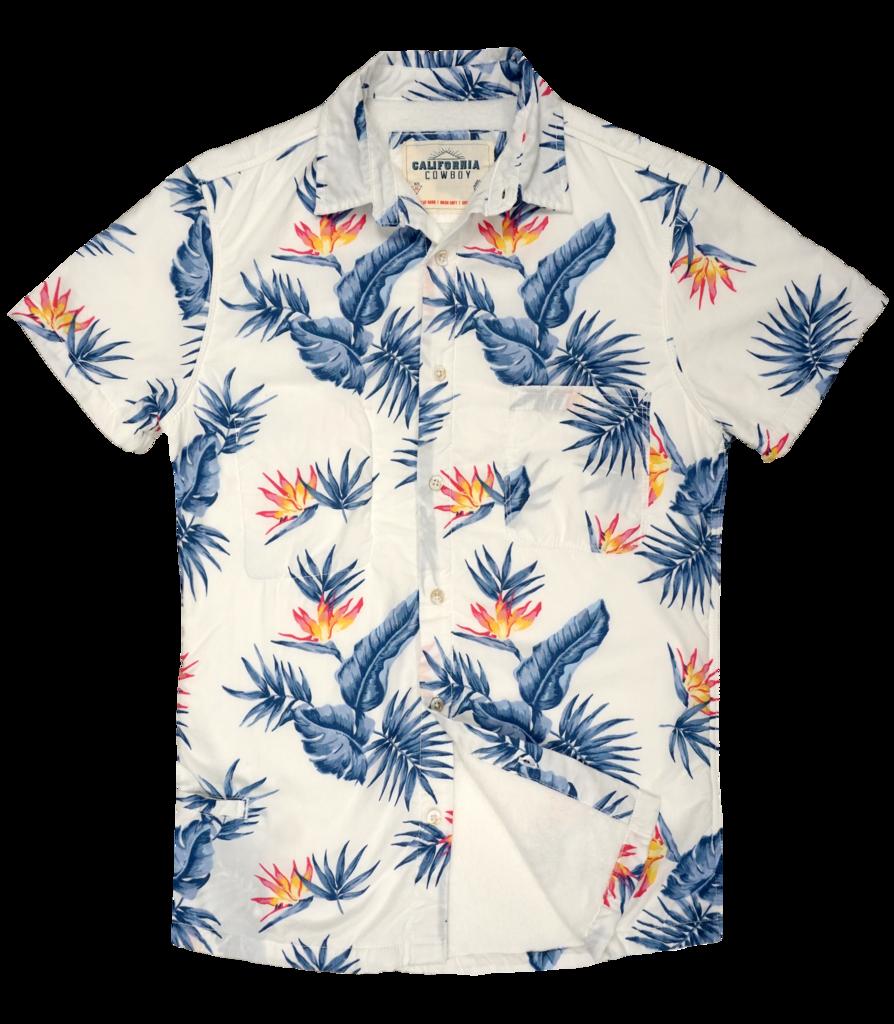 Aloha friday hawaiian shirts. Sunset clipart shirt hawaii