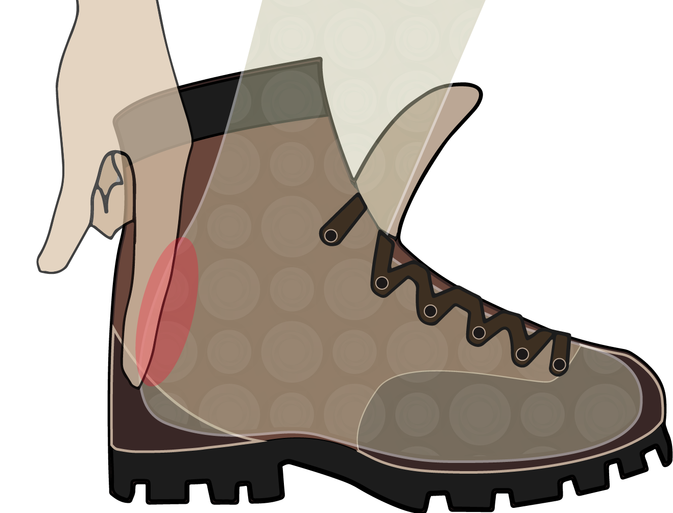 Hike clipart brown boot. Footwear bushwalking howtofithikingbootse lace