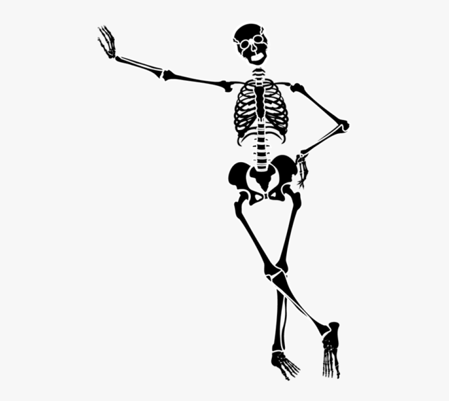 Free download clip art. Clipart skeleton