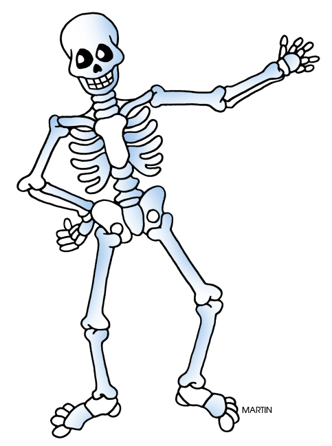 Free public domain halloween. Skeleton clipart