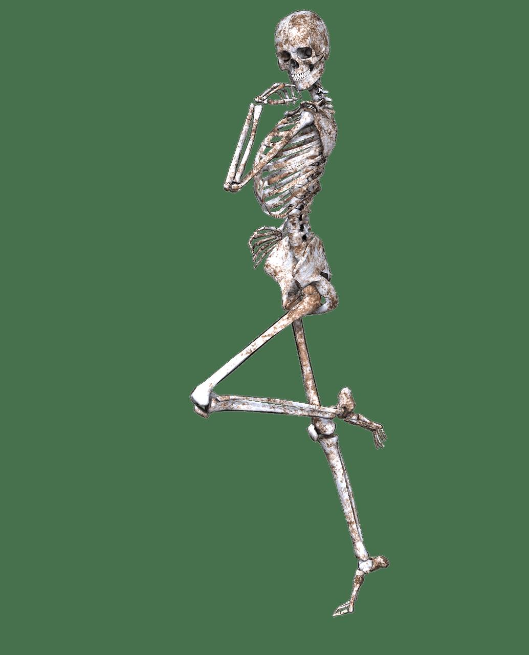 Skeleton Leg Choice Image