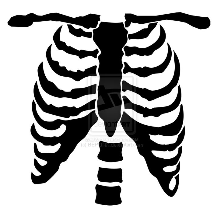 Chest Clipart Skeleton Roblox T Shirt Transparent Clipart Skeleton Chest Clipart Skeleton Chest Transparent Free For Download On Webstockreview 2020