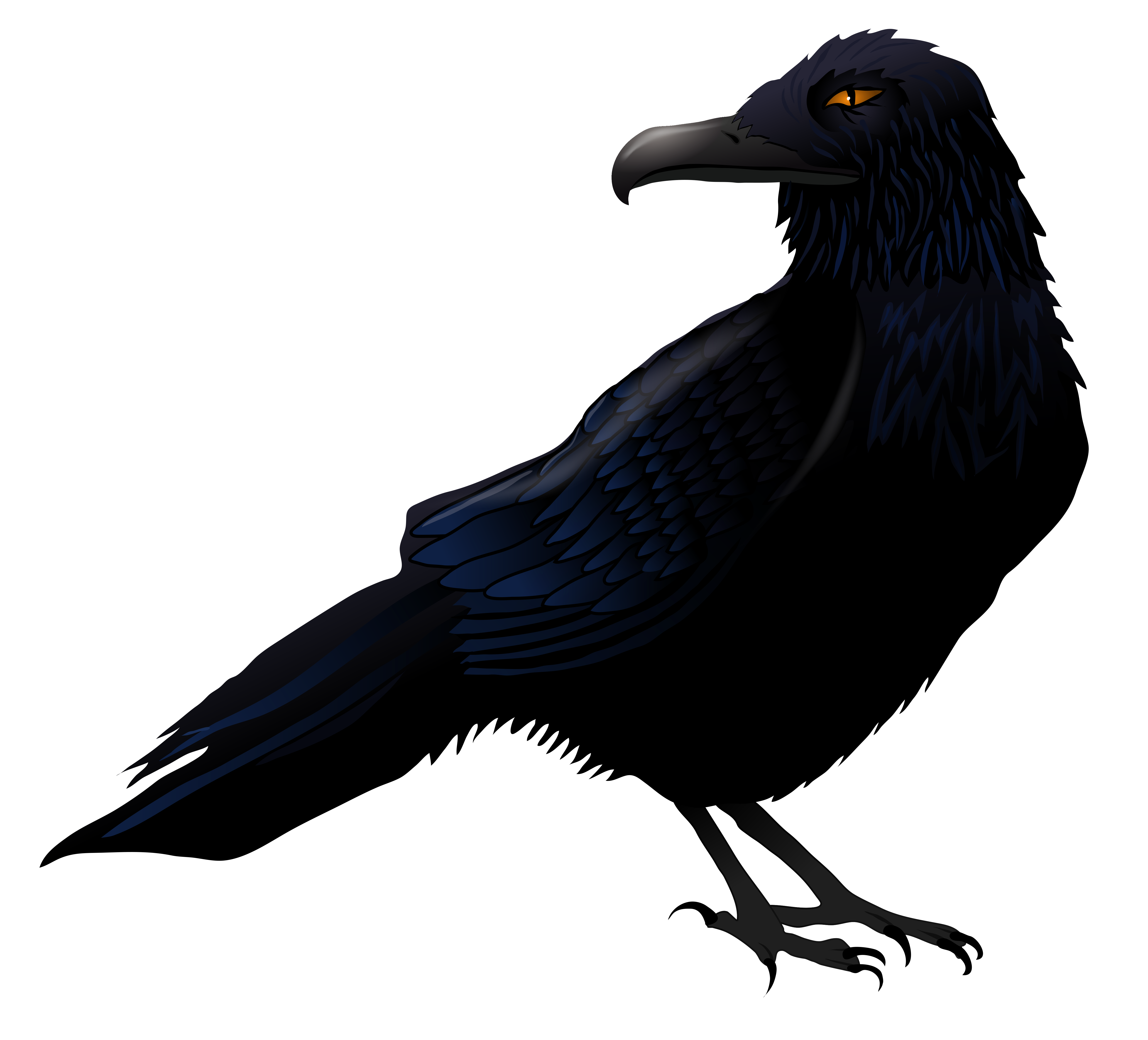 Haunted raven png vector. Skeleton clipart crow