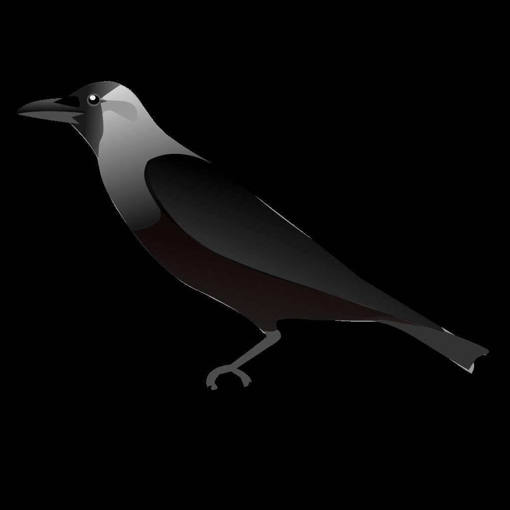 Skeleton clipart crow. File housecrow svg wikipedia