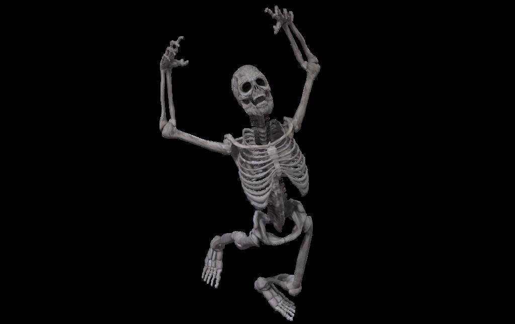 Skeleton plain