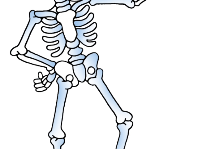 Clipart skeleton strong. Bones cliparts free download