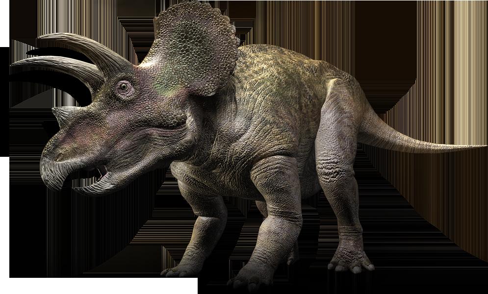 Dinosaur clipart swamp. Triceratops pinterest prehistoric